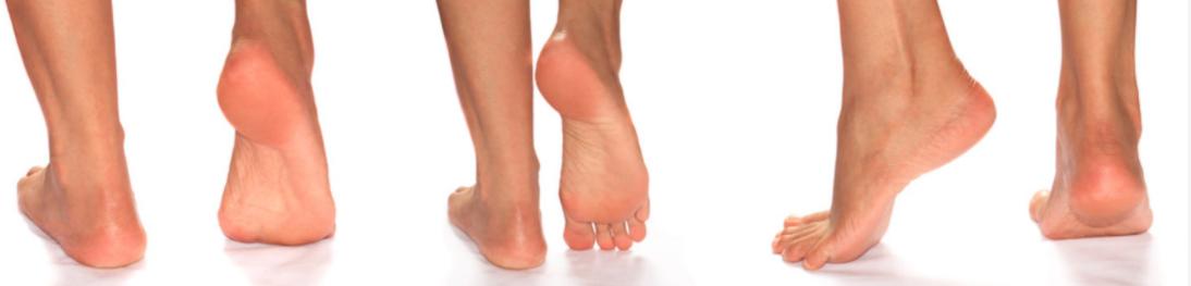 centro cura del piede.png